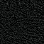 Rushmore - Raven